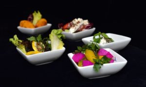restaurant-den-haag-alhayat-menukaart-1
